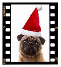 Santa Pug by Edward Fielding