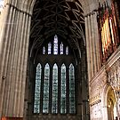 York Minster 1 by rsangsterkelly