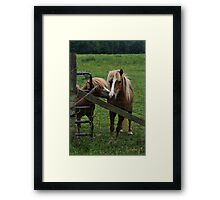 DoubleTrouble Framed Print