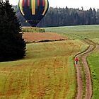 Hot Air Balloon Lands Field Sussex by Jamie Roach
