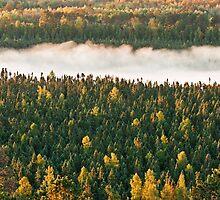 Band of Fog by April Koehler