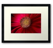 f37)traditional Framed Print