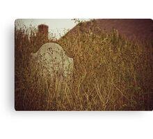 grave. Canvas Print