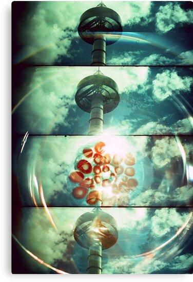 Solaris by Colin Gardiner