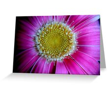 f16)floral Greeting Card
