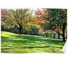 Pretty Foliage Poster