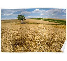 Wheat and A Tree Poster