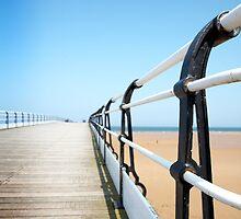 Saltburn Pier railings by Phillip Shannon