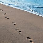 Footprints in the sand by marina63