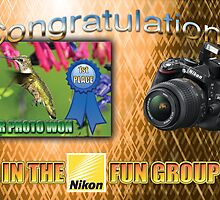 "Banner - won first place in the Nikon Fun Group"" by imagetj"