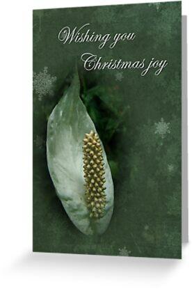 Christmas Joy Greeting Card - White Anthurium by MotherNature