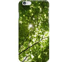 Sun light through tree branches iPhone Case/Skin