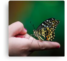On my finger  Canvas Print