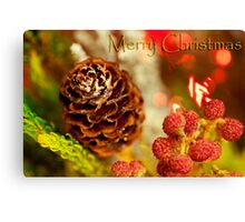 Pining For Christmas Canvas Print