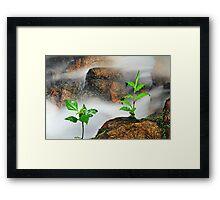201209080855 Companion Framed Print