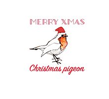 Christmas Pigeon  Photographic Print