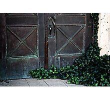 Ivy Door Photographic Print