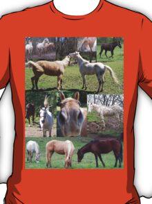 Popular & Unique Horse Collage  T-Shirt