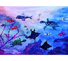 What is under the sea today, watercolor Photographic Print