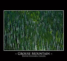 Grouse Mountain by amieanderson