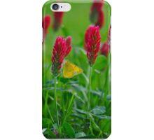 Sweet Nectar On Clove Flowers iPhone Case/Skin