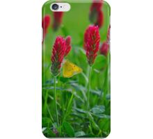 Sweet Nectar On Clove Flowers iPhone Case/Skin