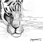 Tiger, tiger, burning bright by ArtisticCole