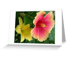 Hibiscus and day lily Greeting Card