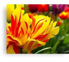 Flower Flame Canvas Print