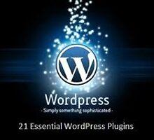 how to install wordpress by playfi123