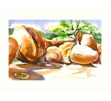 Elephant Rocks State Park Art Print