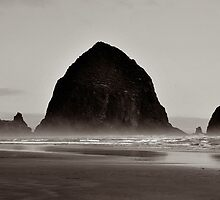 Haystack Rock by Beth Thompson