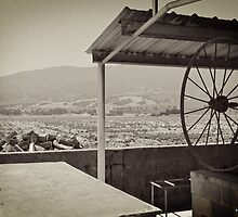 Mission Barbacoa by 2HivelysArt