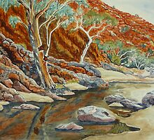 Redbank Gorge, West MacDonnell Ranges, NT by Virginia  Coghill