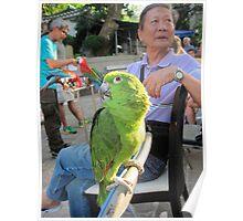 Hong Kong  Bird Market  Poster