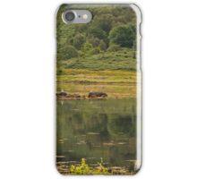 Landscape in Western isles Scotland iPhone Case/Skin