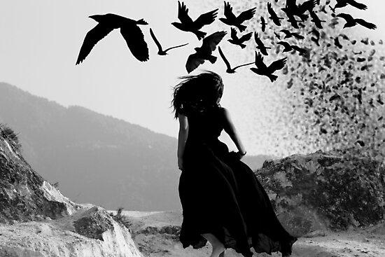 Go birds Go by queenenigma