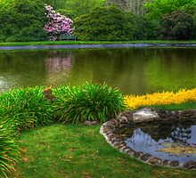 Bisley Gardens III - Mt Wilson NSW Australia - Panaroma  by Brad Woodman