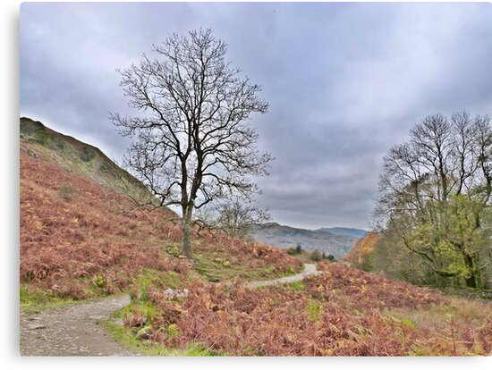 Autumn at Loughrigg. by Lilian Marshall