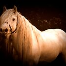 Majestic (Part Two-Golden Edition) by Lou Wilson