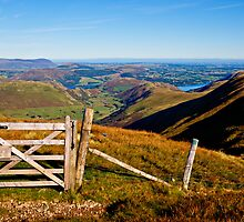 Martindale Common - Ullswater by David Lewins