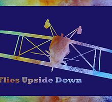 Flies Upside Down by PaintboxCollage
