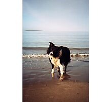 A paddle with Indy Photographic Print