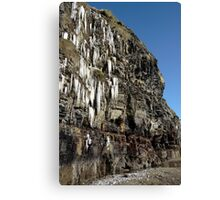 thawing cascade of icicles on a cliff face Canvas Print
