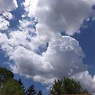 Sunny Sky by yesdnil66