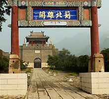 Walking the Walk ~ Great Wall of China at Huangyaguan by Lucinda Walter