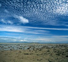 Whitsunday Islands, Australia by Daniel Hewes