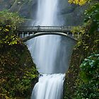Multnomah Falls in Fall by Don Schwartz