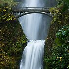Multnomah Falls Upclose by Don Schwartz