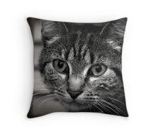 Little kitten Throw Pillow